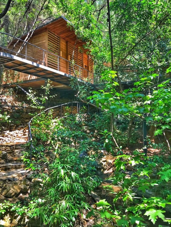 Лабиринт от мостчета в гората отвежда до Sanda SPA.