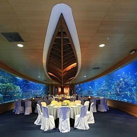 """РЕСТОРАНТ SUBMARINO, VALENCIA, ИСПАНИЯ: L'Oceanogràfic Oceanarium е част от известния Град на изкуствата и науката, построен в старото речно корито на река Турия във Валенсия. Посещението в подводното """"царство"""" ще бъде непълно, без да посетите Submarino. Залата е заобиколена от гигантски аквариум. Менюто - пресни морски дарове и традиционни испански ястия."""