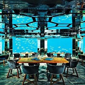РЕСТОРАНТ SEA, КУРОРТ ANANTARA KIHAVAH VILLAS, МАЛДИВИ: Опитайте висококачествената кухня в екзотична обстановка - в аквариумната зала с прозрачни стени и гледка към жителите на подводния свят се предлагат в ресторант Sea в Малдивите. Менюто за дегустация е безупречно: изпечено с подправки морско брашно, миди, деликатен омар със зеленчуци, японски говеждо wagyu ... и това не е всичко!
