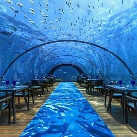 """РЕСТОРАНТ """"5,8"""", МАЛДИВИ: Вечеря под прозрачен купол на 5,8 м дълбочина можете да се насладите в ресторанта на Хуравали в Малдивите. Изборът на маса няма значение - от всяка точка можете да видите завладяващи гледки на жителите на Индийския океан. Менюто варира в зависимост от сезона. Има и вегетариански ястия. Струва си да опитате омарите, мидите, палачинките от омар и задължително - сирене с манго."""