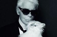 Карл Лагерфелд продава копия на котката си