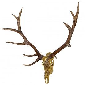 Прекрасен интериорен трофей, за който не е убит нито един елен