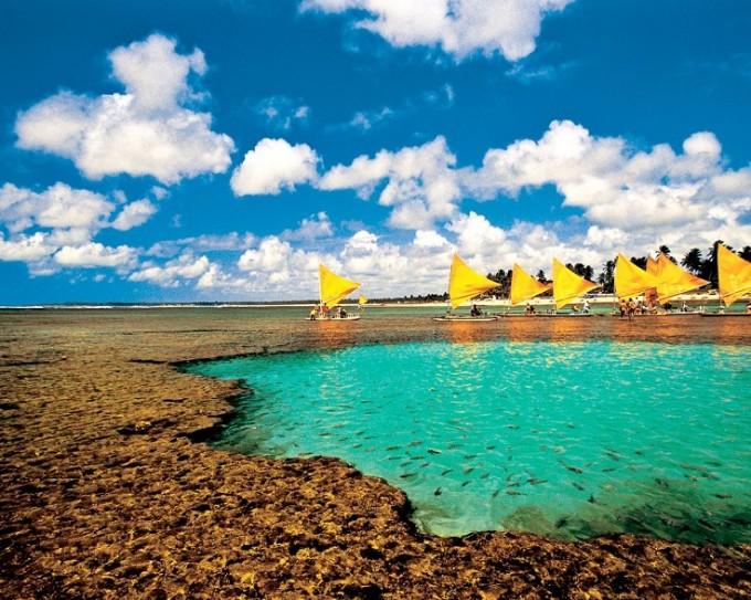 PORTO DE GALINHAS /  Осем поредни пъти този плаж е обявяван за...