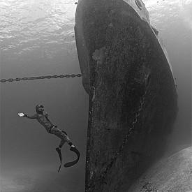 """КОРАБОКРУШЕНИЕ /  Елън Килартс е майстор водолаз и подводен фотограф от Белгия, а с тази подводна снимка от 2014 година печели фотоконкурс в категория """"Отломки""""."""