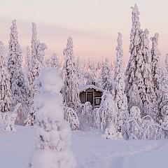 @EEVAMAKINEN / В обектива на Ева Макинен всеки пейзаж придобива мистичен кинематографичен вид. Полярното сияние в снимките й е като в сцена от филм на Уес Андерсън.