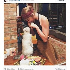 Тейлър Суифт с котето си