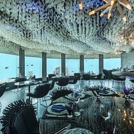 РЕСТОРАНТ SUBSIX, КУРОРТ NIYAMA, МАЛДИВИ: Насладете се на подводния свят на Индийския океан от ресторанта Subsix - любимо забавление за гостите на курорта Niyama в Малдивите. Темата на интериора е подводна флора и фауна. Oсветлението се променя през целия ден, за да осигури на посетителите по-добър изглед - от прозорците можете да видите кораловия риф. Ресторантът е построен на дълбочина от шест метра, на 500 метра от брега.