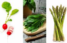 6-те основни зеленчука на пролетта