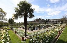 """""""Бялата градина"""" в Лондон в чест на Даяна Спенсър"""