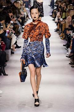 Колекция Christian Dior / Париж / зима 2016