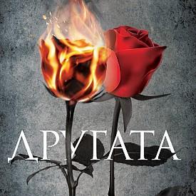 """""""Другата"""" на Васил Панайотов е блестящ роман за разликата между любов и обич."""