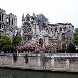 Какво трябва да знаете за парижкия Нотр Дам