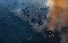 LVMH ще дари 10 милиона евро за борбата с пожари в горите на Амазония