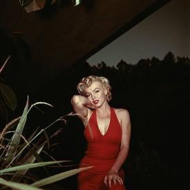 Мерилин през 1954 г.