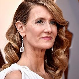 Лора Дърн – тя залага на стария холивудски блясък с нежни къдрици и дълбок страничен път. Акцентът в грима й пък е свежата кожа и перфектните розови устни.
