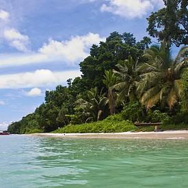 Хавелок, Индия  Най-популярният сред Андаманските острови, този е прекрасен за гмуркане и изследване на джунглата.