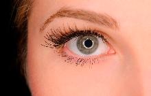 7 интересни факта за очите
