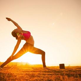 """Рак: Ащанга йога  Какво е това: Виняса йога, която акцентира на връзката между дух и тяло, при която отделните асани са свързани една с друга чрез определени """"преходни"""" движения. От изключителна важност е синхрона между движенията и дишането, защото именно така съзнанието на практикуващия се успокоява, което от своя страна е главната цел на ащанга виняса йога.  Защо е подходяща за тази зодия: чувството за баланс помага за успокояване на чувствителността на тази зодия."""