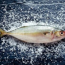 МОРСКА ХРАНА  Дива сьомга, диетична риба от вида камбала