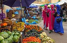 На първо място е добре да знаете кога е празникът Рамадан – това е месецът на задължителния мюсюлмански пост. По това време мюсюлманите се ограничават от много храни, както и от алкохол, от тютюнопушене, прибират се преди залез слънце и изобщо има доста условности, които биха лишили престоя ви от чара на Мароко.