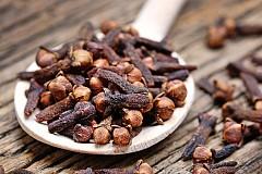 КАРАМФИЛ НА ЗЪРНА ЗА МОЗЪКА Карамфиловите зърна са едно от шестте върховни тонизиращи средства според тибетската медицина. Императорите на древен Китай сдъвквали по едно-две за прочистване на дъха след хранене. Но ползите от карамфиловите зърна са много повече – отварата им има отлично въздействие върху белите дробове и синусите, както и върху мозъчната дейност, той като усилват способността за съсредоточаване. Познат е и ефектът им за тонизиране на мъжката и женската сексуалност. В стари немски книги по фитотерапия се споменават свойствата им срещу зъбобол и херпес на устата.