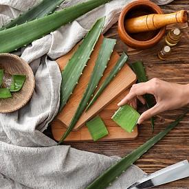 Растения за здраве и дълъг живот според древните медицински школи