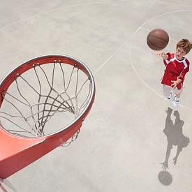 Баскетбол, волейбол: развиват точно око, координация, ловкост, ритмичност на движенията. Препоръчителна възраст за старт: 10-12 години.