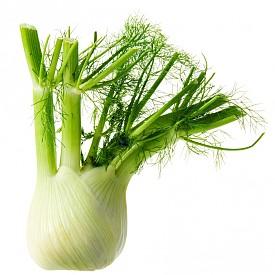 ФЕНЕЛ / Ако обичате копър, този зеленчук ще се превърне в любим за зимата. Прилича на целина, но този корен е по-сладък и е подходящ за салати. Но е изключително вкусен и ако се изпържи или изпече със зехтин. Фенелът съдръжа много фибри и малко калории.