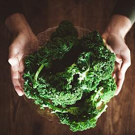 КЕЙЛ / Не много разпространеният у нас зеленчук е изключително богат на витамини А и В6, както и на калий. Този вид къдраво зеле е пикантно и подходящо за салати, супа, дори и за коктейли.