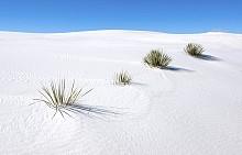 Белите пясъци, Ню Мексико