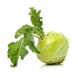 РЯПА / В миналото ряпата е била един от най-известните и консумирани зеленчуци заедно с картофите. За първи път ряпата е открита в Сибир и от там се разпространява в Европа – това не е случайно. Този зеленчук е с огромен запас от витамин С, протеини и фибри. Освен това не съдържа почти никакви въглехидрати. Вкусът на суровата ряпа е странен, но като гарнитура в пюре е особено вкусен зеленчук.