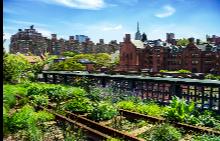 Паркът Хай Лайн е бивша жп естакада.