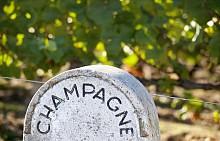 Виното и неговите топ дестинации: Франция