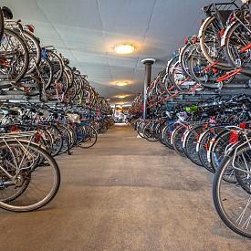 Разнообразието от велосипеди е огромно! Продават се дори такива, в които можете да возите бебето си.