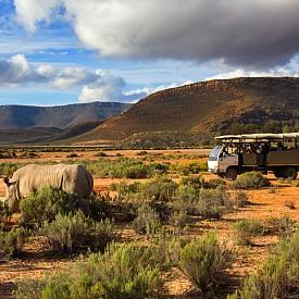 Сафарито в Африка е незабравимо изживяване