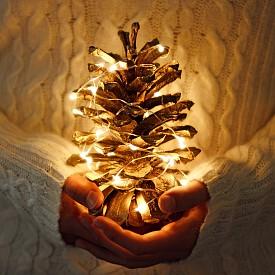 КОЛЕДНИ ЛАМПИЧКИ През Викторианските времена коледните дръвчета били декорирани със свещи, които символизирали звездите. Няколко века по-късно американските застрахователни компании настоявали коледните свещи по елхите да бъдат забранени със закон, заради постоянните пожари. През 1895 г. американецът Ралф Морис създал първите коледни лампички, захранвани с електричество – подобни на тези, които използваме днес.