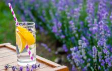 По стъпките на лятото с коктейл в ръка: ЛАВАНДУЛОВ ДЖИН ФИЗ