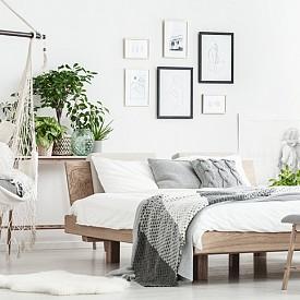 Спалня: тя е територия на повишен риск, тъй като в нея са концентрирани мебели и текстил, които в по-голяма или по-малка степен са подложени на химическа обработка. Защитете се с помощта на английски бръшлян, драцена и тръстикова палма.