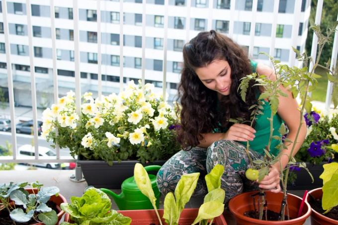 """""""В идеалното жилище природата органично се вписва в..."""