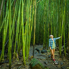 Бамбуковите гори са често срещани в Мауи