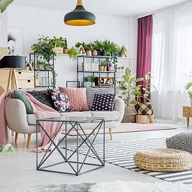 """Хол: източниците на замърсявания тук са не само много, но и различни – мебели, електроуреди, дим, липило, лак… Затова в хола заложете на истински """"коктейл"""" от стайни растения: фикус, хлорофитум и спатифилум."""