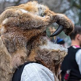 Прегърнете мечка в Команещи! Ако не се страхувате да се срещнете лице в лице с орда страшни (и мъртви) мечки с оголени зъби, този румънски град ще ви даде доста материал за социалните мрежи. В края на всяка година там се провежда един традиционен парад, който доста прилича на нашите кукери, но местните се обличат в кожи и маски от истински мечки. След това обикалят от врата на врата, за прогонят злото от домовете на хората.