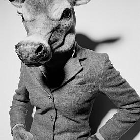 Фотография Livestock от 2001 г.