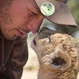 """""""Спасяването на Сърга"""" (на 4 октомври от 11 ч. по Viasat Nature) е изумителната история на Валентин Грюнер, който успява да излекува и отгледа много болно лъвчe. Специалната програма на Viasat Nature цели да повиши разбирането за застрашеността на естествения ни свят, като покаже колко неповторима и силна е връзката между човека и животните и колко важно е да уважаваме и защитаме дивия живот на планетата ни."""