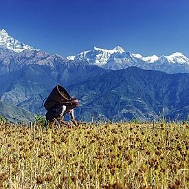НЕПАЛ / За да се възстановяват след разрушителното земетресение от 2015 г, непалците имат нужда от финансови постъпления от туристите – това е най-доброто място, на което може да отидете през 2017-та.
