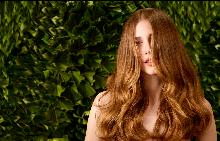 Искате ли 5 942 нови косъма на скалпа?