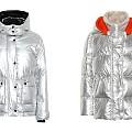 Сребърните якета на зимата