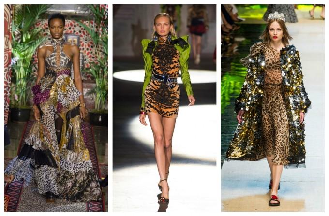 Тропическа градина от Cavalli, DSquared2 и Dolce&Gabbana
