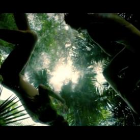 Модели от Ел Ей с вдъхновяващо видео