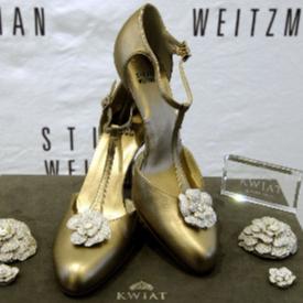 Творението за 1 милион долара на известния дизайнер на обувки Стюарт Вайцман се казва Retro Rose Pumps.